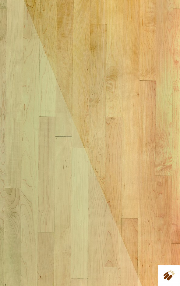 ATKINSON & KIRBY: 504502 Maple (Canadian) Unfinished Prime Grade (20 x 57mm)-0